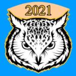 Owl VPN for PC